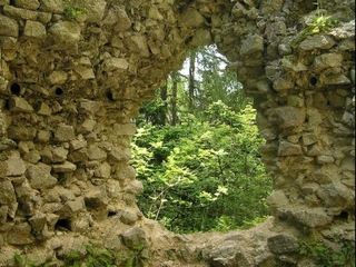 Zřícenina hradu Kynžvart